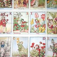 Flower Fairy Alphabet Printed 100% Cotton Quilting Fabric Panel Michael Miller