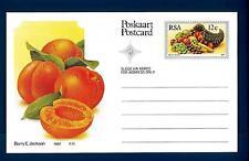 SOUTH AFRICA - SUD AFRICA - RSA - 1982 - Cart. Post. - Frutta locale: Albicocche