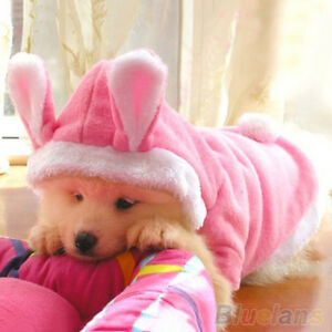 Image is loading Trendy-Pet-Dog-Cat-Cute-Bunny-Warm-Autumn- & Trendy Pet Dog Cat Cute Bunny Warm Autumn Winter Clothes Puppy ...