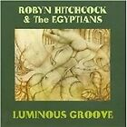 Robyn Hitchcock - Luminous Groove (2008)
