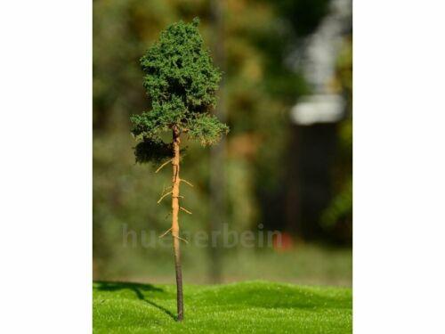 Hünerbein Natur Baum SOM1 Kiefer Jung 20cm H0 handgefertigt