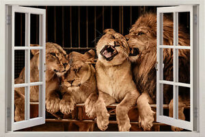 3D Window lion leopard TIGER WALL STICKER Jungle Wild ANIMALS Decal Removable