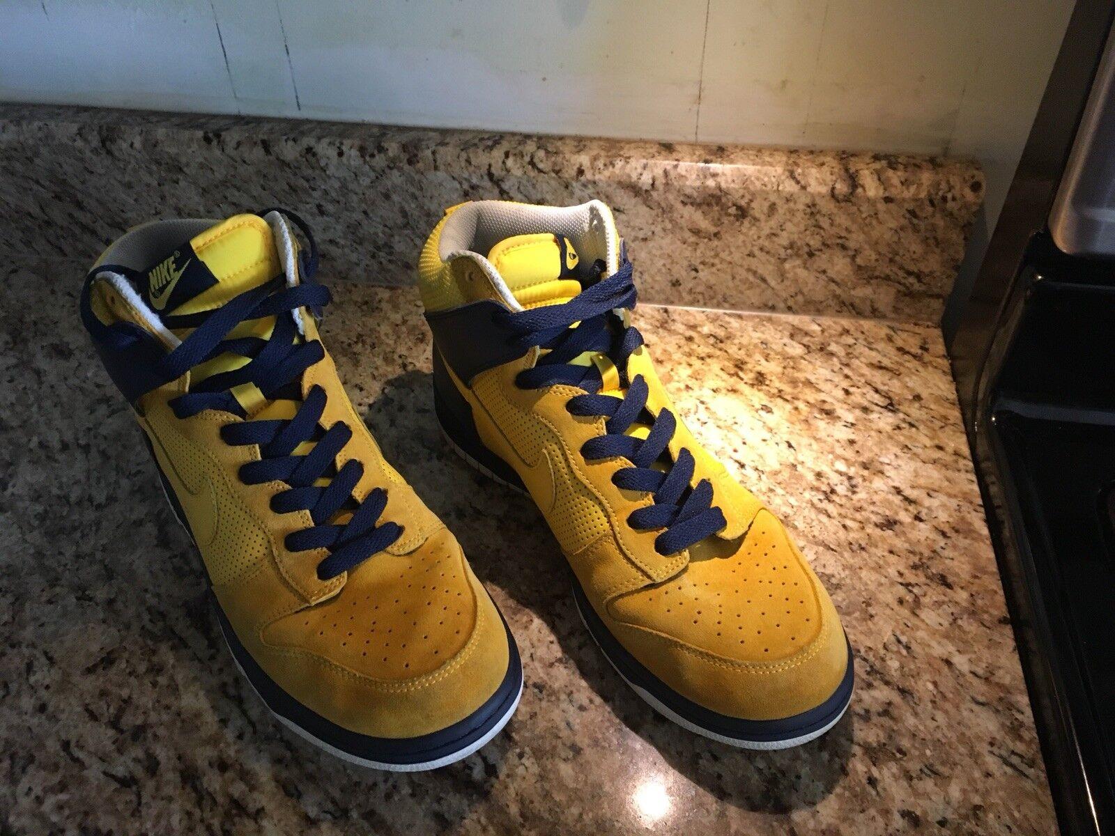 Nike Dunk High Fairly Rare Shoe Great Shape Size 10.5