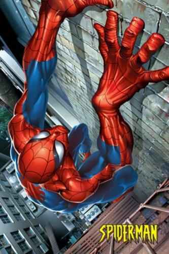 Maxi Poster 61cm x 91.5cm new and sealed Climbing Marvel Spider-Man