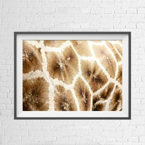 AFRICA TRIBAL GIRAFFE SKIN PATTERN POSTER PICTURE PRINT Sizes A5 to A0 **NEW**
