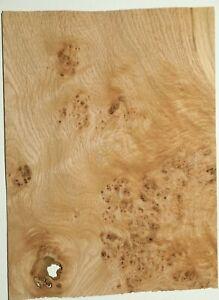 10 Leaf Veneer-Oak