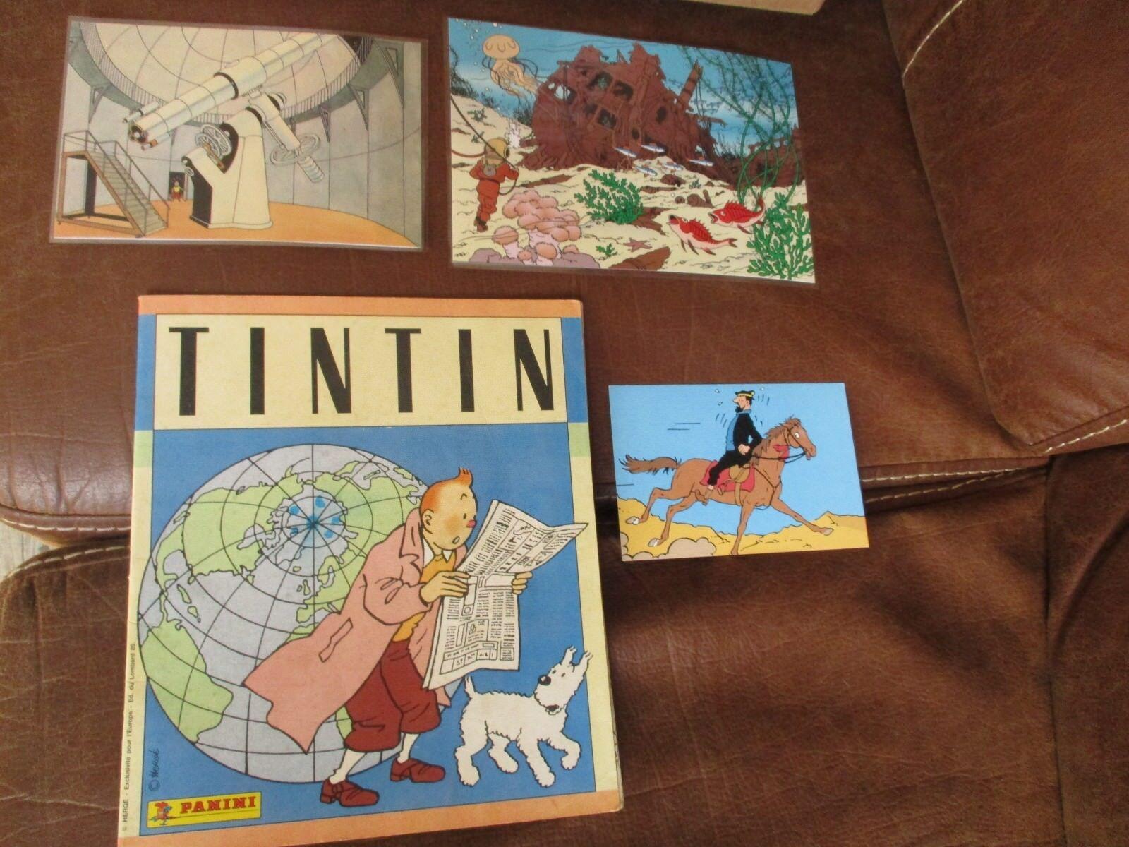 Tintin-Lot  Abum panini,Lombard,Hergé 1989+ photos plastifiées et carte Lombard