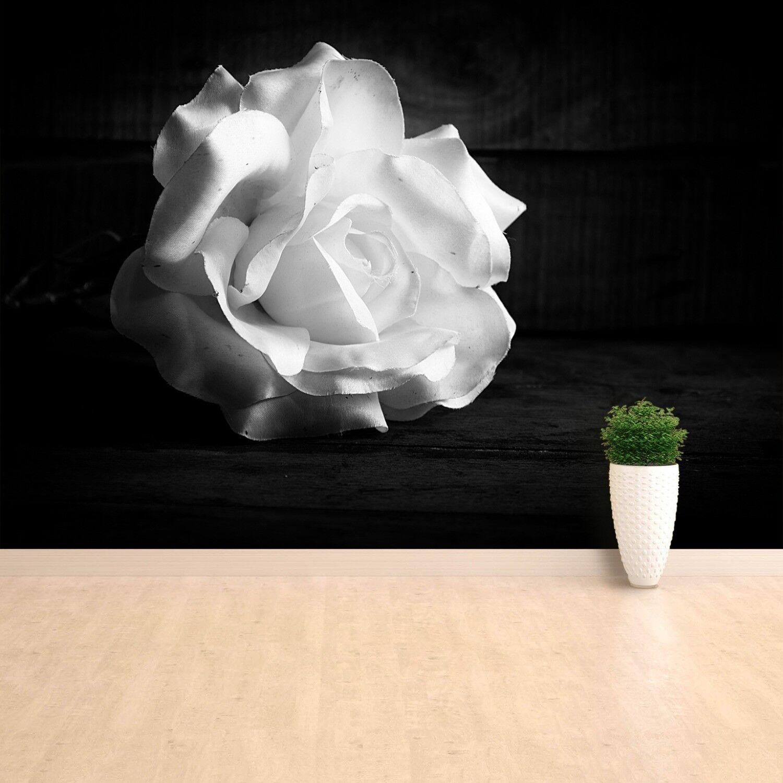 Vlies-Fototapete Fototapeten Tapete aus Vlies Poster Foto Weiße Rose