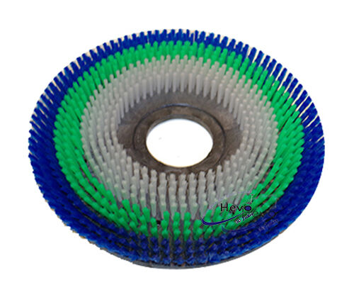 Schrubbürste adapté pour Floordress e 43 ppn 3-k brin-soft
