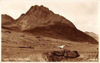 BR68511 tryfan  capel curig sheep wales  judges 22114  real photo