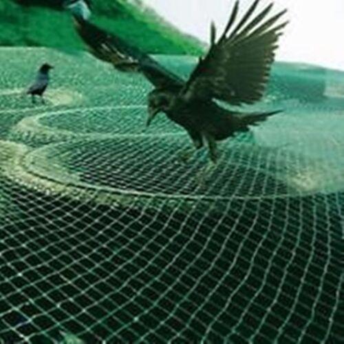 Profi Garten Netz Vogelschutznetz Gartennetz Obstbaumnetz Kirschbaumnetz 10 x 4