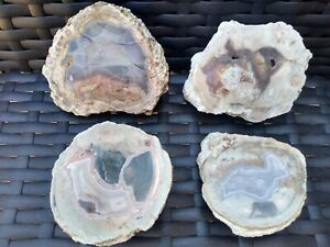 Mt-Lyall-thunderegg-2-5-3-5-034-set-of-4-half-pieces-mixed-agates-unpolished-geodes