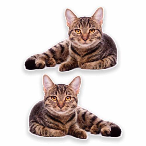 2 x cat vinyle autocollant voiture voyage bagages #9639