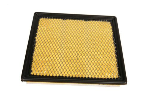 Air Filter ACDelco Pro A3175C