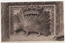 France, Chateau de Blois, Porc-Epic Embleme de Louis XII ND 54 Postcard, B221