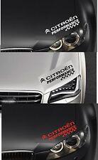 For CITROEN - PERFORMANCE HEADLIGHT CHECKS - CAR DECAL STICKER - DS3  300mm long