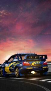Plaque métal  voiture de rallye    30 X 20 CM