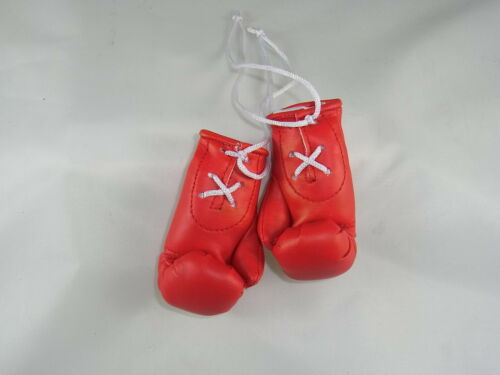 Autographed Mini Boxing Gloves James DeGale
