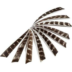50X Archery Natural Turkey Feathers Shield Right Wing 5/'/' Arrow Fletching DIY