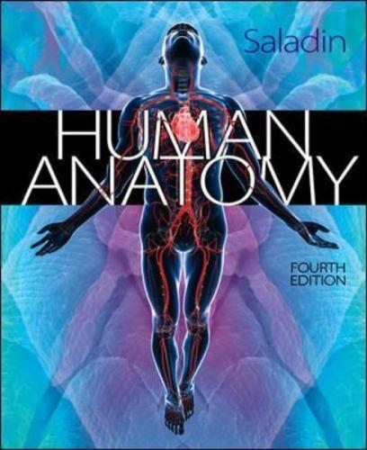 Human Anatomy by Kenneth S. Saladin (2013, Hardcover)   eBay