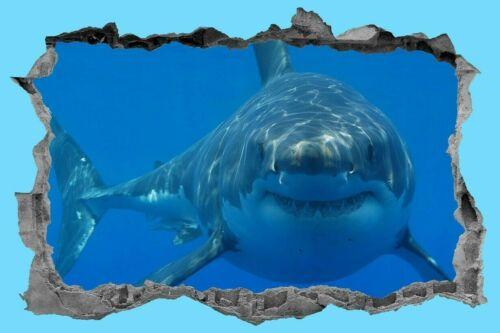 Peinture Murale Wall Art Décoration 3D Decal Tropical Grand requin blanc Sea Life autocollant poisson