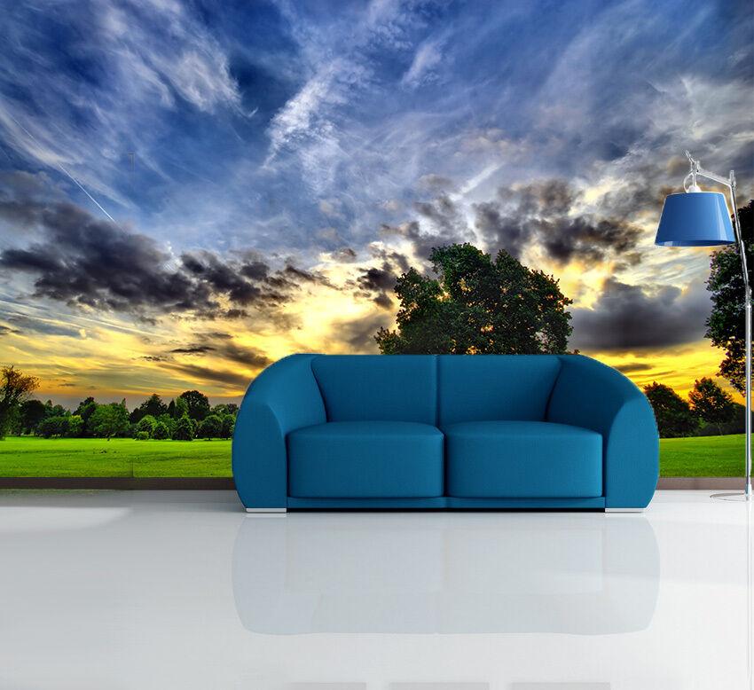 3D Der Himmel Grünen Rasen 11 Fototapeten Wandbild Fototapete BildTapete Familie