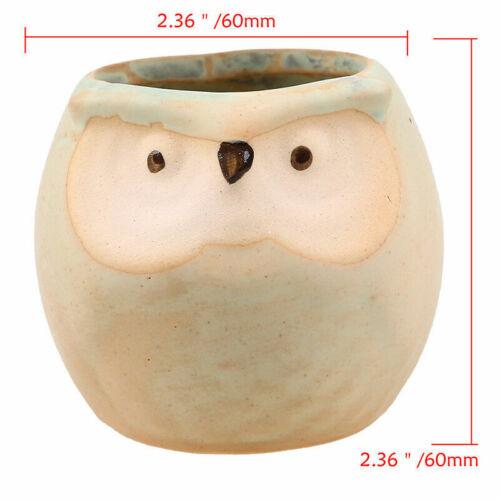 Ceramic Small Plant Pot Owl Succulent Flower Planter Garden Bonsai Yard Vase Box