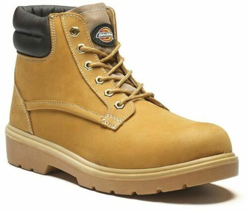 Dickies Donegal Steel Toe-Cap Safety Boots Mens Work Boot Sizes 3-12 FA9001