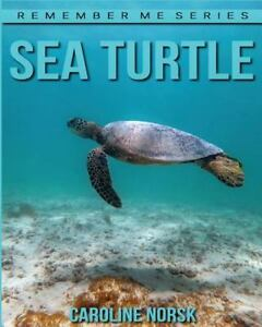 Details about Sea Turtles : Amazing Photos & Fun Facts Book About Sea  Turtles for Kids, Pap