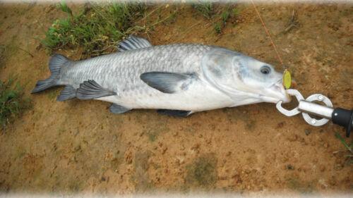 GT-Bio 10g Köder Lure Blinker Fishing Bait Freshwater Saltwater Leurre Yacuma