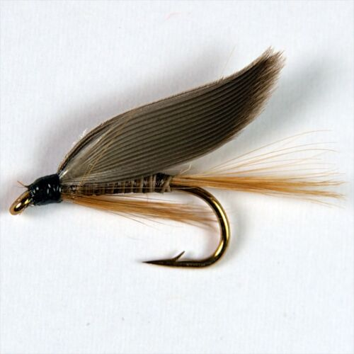 12 ginger quill wet fly fishing trout mouches diverses options par Libellules