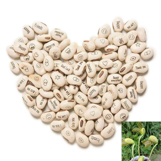 100PCS Hot ! DIY Magic Bean Seed Plant Love Gift Growing Message Word