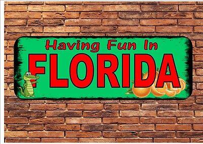 Floride Style Vintage Fantaisie Plaque Murale Signe Métal Florida SIGNE