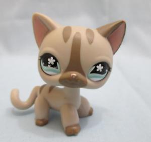 Littlest Pet Shop Cat Shorthair Siamese 468 Authentic Has Initials Underneath