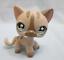 miniature 1 - Littlest Pet Shop Cat Shorthair Siamese 468 Authentic Has Initials Underneath