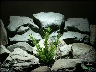 faux aquarium plants: juniper bush from ron beck designs. pap217