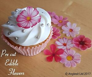 Pre cut beautiful pink flowers edible wafer paper cup cake topper image is loading pre cut beautiful pink flowers edible wafer paper mightylinksfo