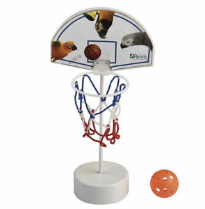 Northern-Parrots-Bird-Basketball-Basket-Ball-Toy-Set
