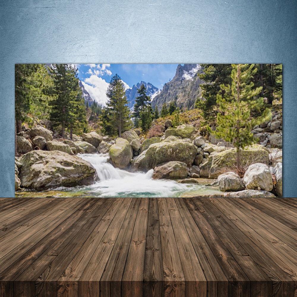 Vidrio Templado Cocina salpicaduras 140x70 bosque de montaña piedras lago de la naturaleza