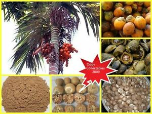 3-OZ-BETEL-NUT-ARECA-CATECHU-POWDER