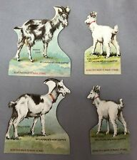 4 c 1890 GOAT Kid Nanny Billy McLaughlin COFFEE Victorian Advertising Trade Card