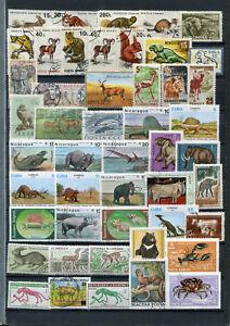 Lot Tiermotive - meist o  ( 41154 )