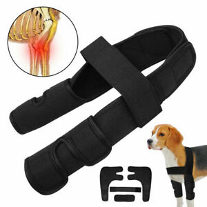 Details about Dog Front Leg Support Brace Foot Arthritis Anti-injury Paw  Joint Wrap Protection