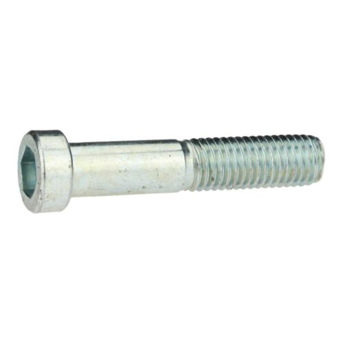 verzinkt farblos 8. 10x DIN 6912 Zylinderschraube niedriger Kopf M 6 x 80 galv