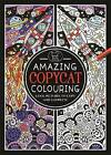 Amazing Copycat Colouring by Emily Golden Twomey (Paperback, 2014)