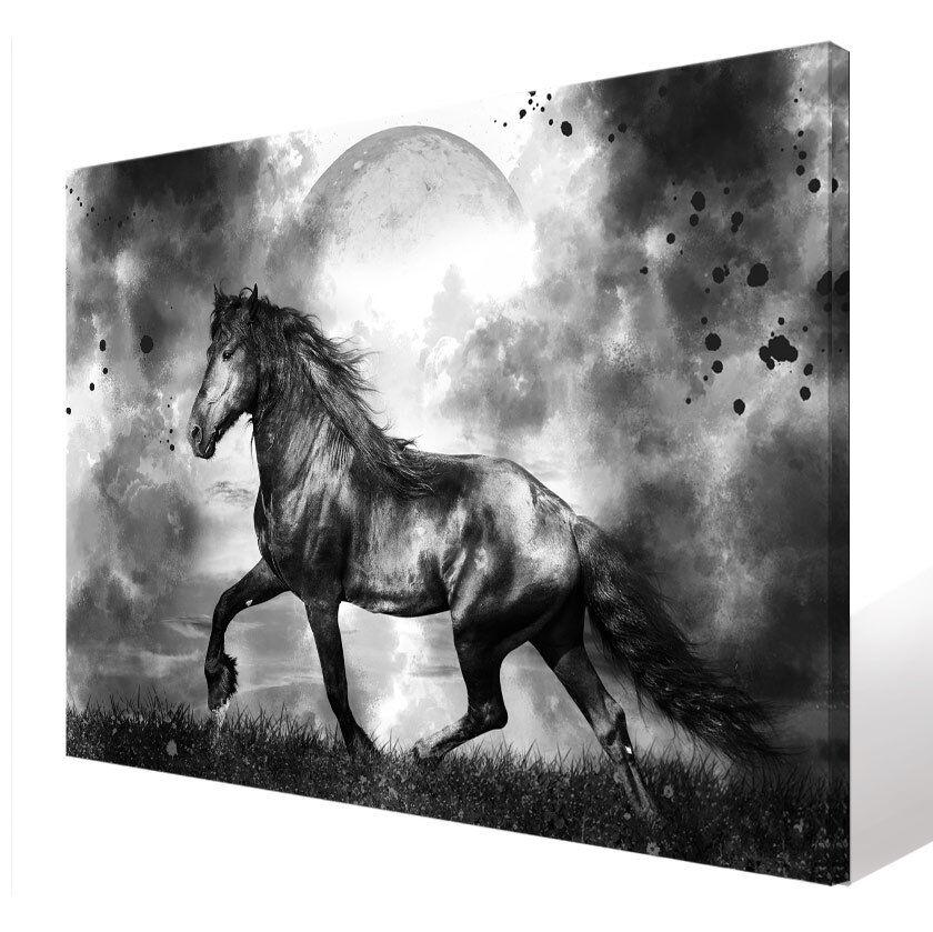 Wandbilder Tier Pferd Mond Natur Bild Leinwand Abstrakte Kunst Bilder D1567