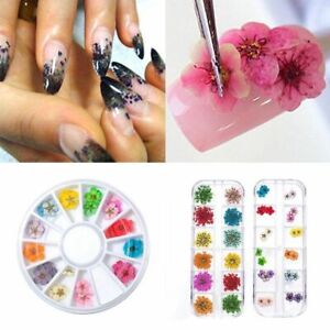 Real-Dried-Dry-Flowers-3D-Nail-Art-Decoration-Design-DIY-Tips-Manicure-12-Colors