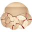 Flechtset-Korbflechtset-Peddigrohr-Rattan-Sets-Korbflechtboden-Papiergarn-uvm miniature 3