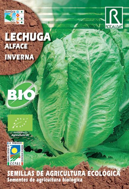 Semillas ECOLOGICAS Lechuga Inverna , Sobre 2 gr.