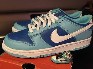 finest selection a22e9 68a72 Details about New Nike Air Dunk sb low argon co jp size 8 624035-411